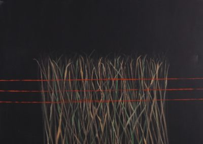 Fence. Oil on canvas. 150x180cm.
